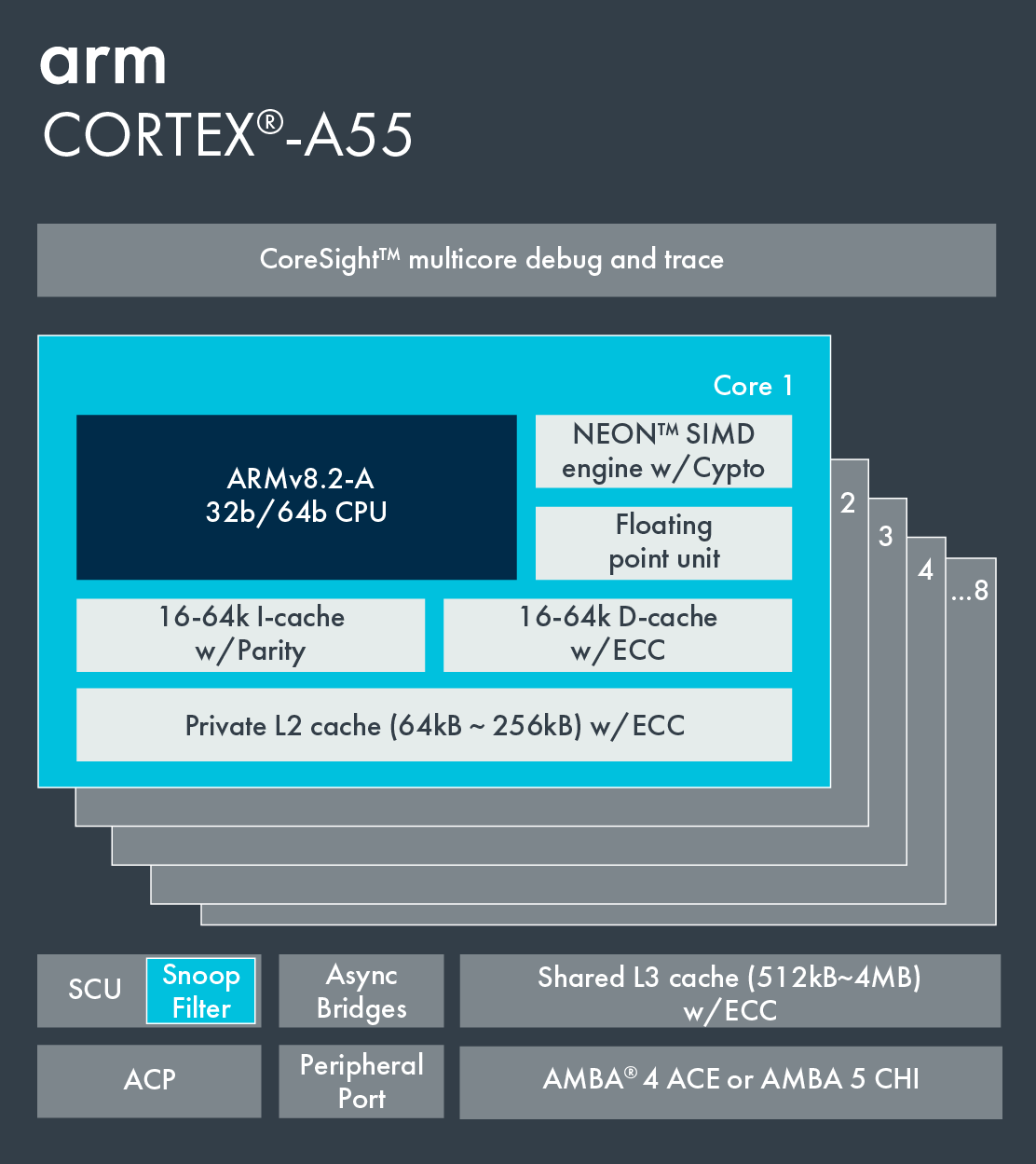 Arm Cortex A55 Complete Specification